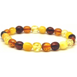 Multicolor olive shape Baltic amber bracelet