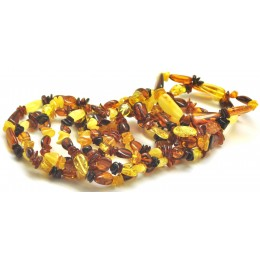 Lot of 10 multicolor beans shape Baltic amber bracelets