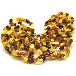 Lot of 20 multicolor beans shape amber bracelets