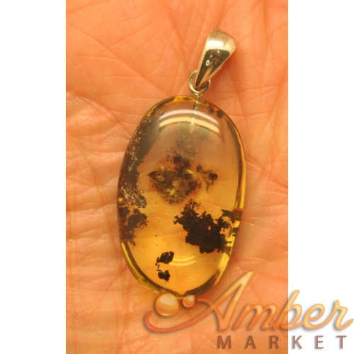 Baltic amber pendant with inclusion