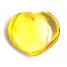 Baltic amber heart shape piece with insects