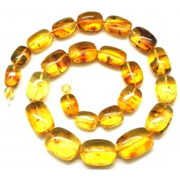 Baltic amber barrel shape necklace with insects