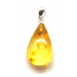 Baltic amber drop pendant with insects