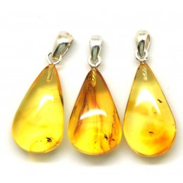Lot of 3 Baltic amber drop pendants with insects