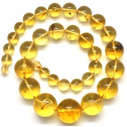 Round beads Baltic amber necklace with insects 60 g.
