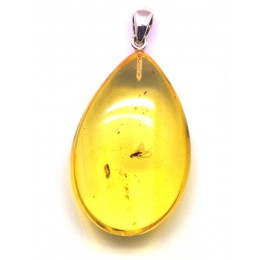 Amber drop pendant with insect