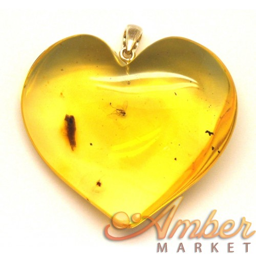 Big Baltic amber heart pendant with insect