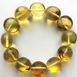 Genuine BALTIC AMBER Bracelet with FOSSIL INSECTS