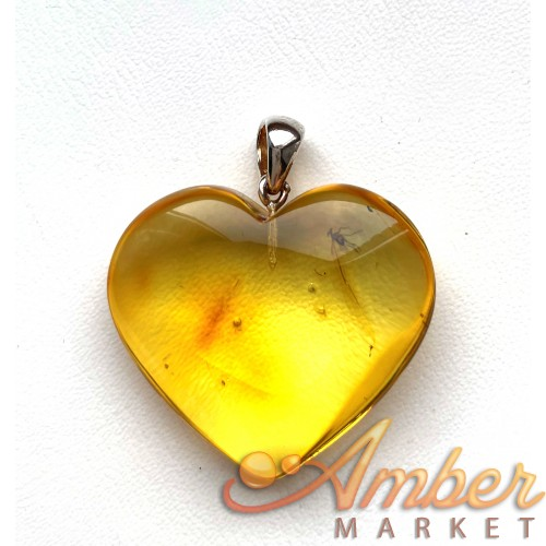 Genuine BALTIC AMBER Heart Pendant with Fossil INSECT 6g