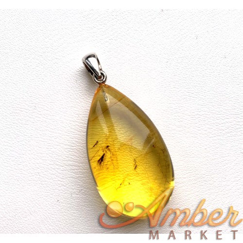 Genuine BALTIC AMBER  Pendant with Fossil INSECT