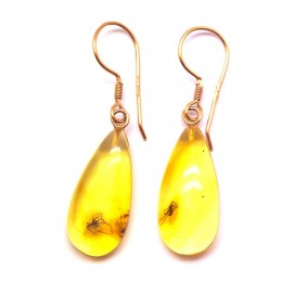 Baltic amber gold earrings with insects