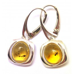 Baltic amber earings with insects