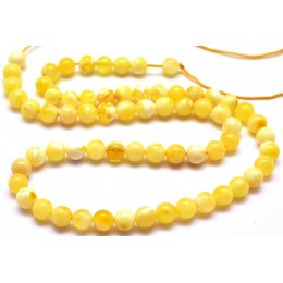 Natural Baltic amber 66 loose  Beads 6 mm strand