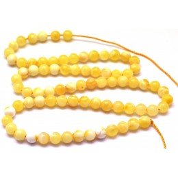 Natural Baltic amber 66 loose  Beads 5 mm white strand 40 cm.