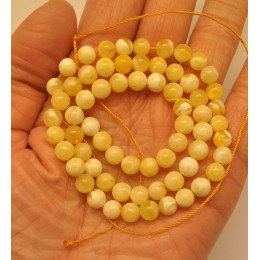 Natural Baltic amber 66 loose  Beads 6 mm white strand 40 cm.