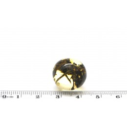 Baltic amber bead with herbs