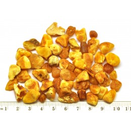 Raw drilled Baltic amber pieces 20 g .