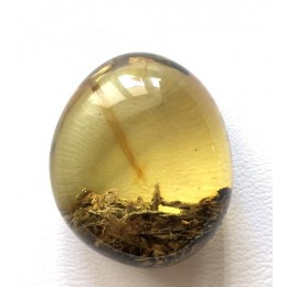 Baltic amber stone with inclusion