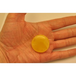 Big natural Baltic amber button shape piece