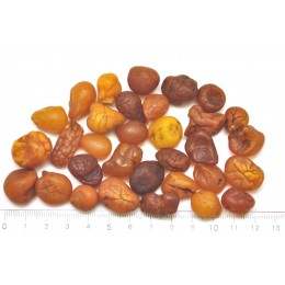 50g.  Baltic amber drops