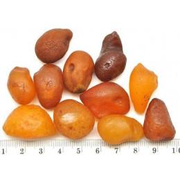 11  Baltic amber drops
