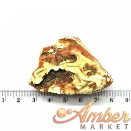 Raw Baltic amber stone 17 g .